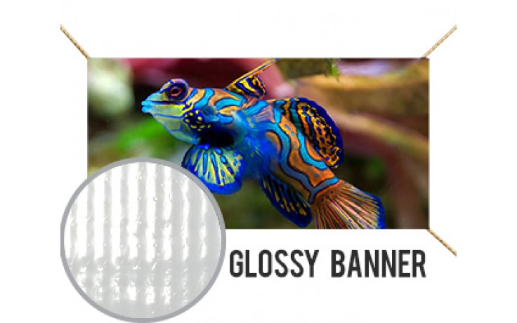 Glossy Banner