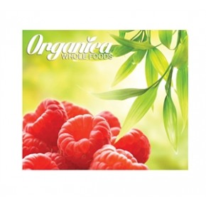 8x10 Straight Pop Up Display (Graphic Only)
