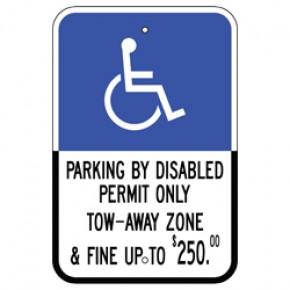 "Handicap - Florida (South) - 12""x18"""